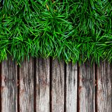 Fresh green grass and Wood Royalty Free Stock Image