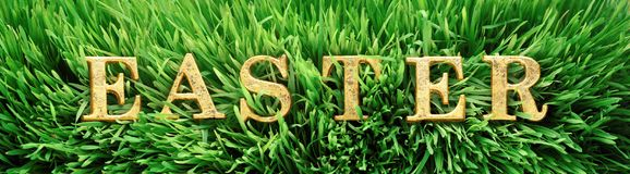 Green grass with the word Easter in bright gold letters. Fresh green grass with the word Easter in bright gold letters Royalty Free Stock Photography