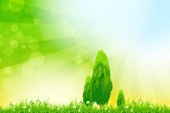 Fresh green grass with yellow bokeh and Trees Royalty Free Stock Photography