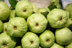 Fresh green guava Stock Photo