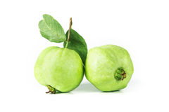 Fresh green Guava fruit  on white background Royalty Free Stock Images