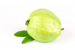 Fresh green Guava fruit Royalty Free Stock Photos