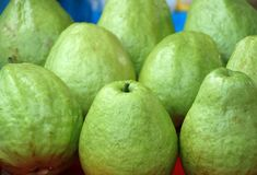 Fresh Green Guavas Royalty Free Stock Photography