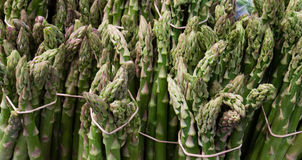 Fresh green and healthy asparagus in bunches Royalty Free Stock Images