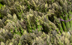 Fresh green and healthy asparagus in bunches Stock Photo
