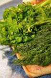 Fresh green herbs Royalty Free Stock Photo