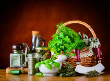 Fresh Green Herbs and Dried Herbs Royalty Free Stock Photography