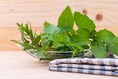 Fresh green herbs harvest from garden in the basket Royalty Free Stock Image