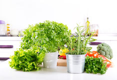 Fresh green herbs in the kitchen. Fresh green herbs and vegetables in the kitchen Stock Images