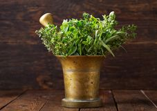 Fresh green herbs in a mortar royalty free stock image
