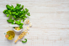 Fresh Green Herbs and Pine nuts with Copy Space Area Royalty Free Stock Photos
