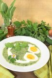 Fresh green herbs soup with eggs Stock Images