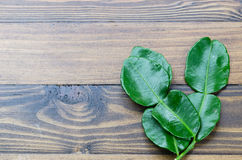 A fresh green kaffir lime leaf on wooden table background Royalty Free Stock Photography