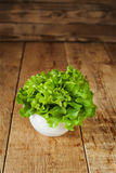 Fresh green kale in ceramic bowl. Selective focus. Royalty Free Stock Photography
