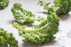 Fresh green kale leaves. On a concrete table Royalty Free Stock Images