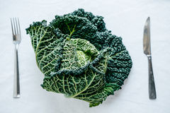 Fresh Green Kale most useful vegetables on white background with Stock Photography