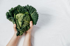 Fresh Green Kale most useful vegetables in woman hands on white Royalty Free Stock Photo