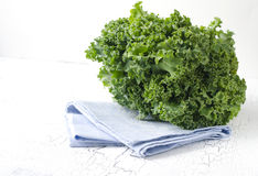 Fresh green kale. On white background Royalty Free Stock Photo