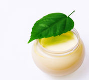 Fresh green leaf and beauty cream isolated Stock Images