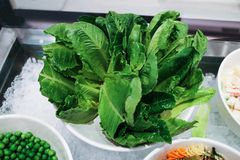 Fresh green Leaf Salad Vegan Food.  stock photo