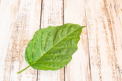 Fresh green leaf on wooden background Stock Photo