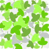 Fresh green leaves. Fresh green colored leaves Stock Photography