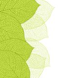 Fresh green leaves background seamless pattern royalty free illustration