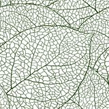 Fresh green leaves background seamless pattern Stock Images