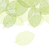 Fresh green leaves background seamless pattern Royalty Free Stock Image