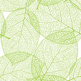 Fresh green leaves background seamless pattern Stock Photos