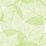 Fresh green leaves background seamless pattern.  stock illustration