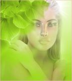 Fresh Green Leaves. Background.  Surreal image of woman with a  abstract background Royalty Free Stock Photo