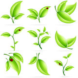 Fresh Green Leaves Icon Set Stock Photo