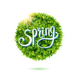 Fresh green leaves and sunshine for Spring Stock Photography