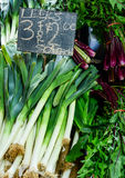 Fresh green leeks for sale in market Royalty Free Stock Image