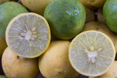 Fresh green lemon cut Royalty Free Stock Image