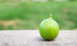 Fresh green lemon on the floor Stock Photo