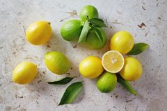 Ripe and unripe lemon with leaves Royalty Free Stock Image