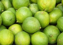Fresh Green Lemons Royalty Free Stock Image