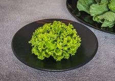 Fresh green lettuce Royalty Free Stock Image