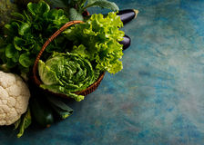 Fresh green lettuce, cabbage and vegetables in a basket Royalty Free Stock Image