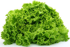 Fresh green lettuce food Royalty Free Stock Image