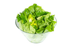 Fresh green lettuce in glass bowl Royalty Free Stock Photos