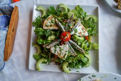 Fresh green lettuce greek mediterranean salad with slice of anchovy, tomato, cheese, cucumber, etc. on white square plate, Mykonos. Island, Greece Royalty Free Stock Photography