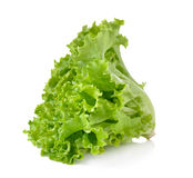 Fresh green lettuce isolated on white background Stock Photos