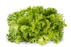 Fresh green lettuce isolated on white Royalty Free Stock Photos