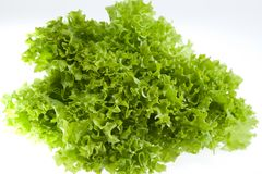 Fresh green lettuce jagged isolated on white background Royalty Free Stock Image