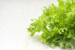 Fresh green lettuce leafs Royalty Free Stock Photography