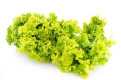 Fresh green lettuce leaves. On white background Stock Photo