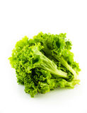 Fresh green lettuce leaves. On white background Royalty Free Stock Photography